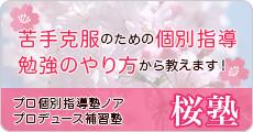桜塾 個別指導